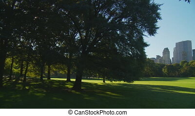 light and shadow park pan shot - pan shot on sunny day in...