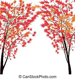 Card with autumn maple tree. Red maples. Japanese red maple....