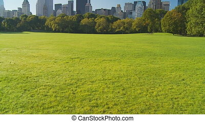 vertical pan shot central park - vertical pan shot in...