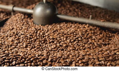 coffee roaster selective focus - fresh roasted coffee beans...