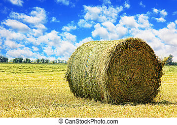 Hay bale on stubble field against cloudy sky. - Hay bale on...