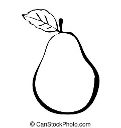 Hiqh quality pear drawn in outline isolated on white...