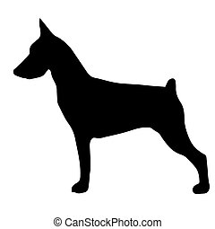 High quality silhouette of pinscher isolated on white...