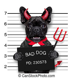 halloween mugshot dog - halloween devil pug dog crying in a...