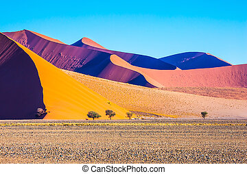 The sharp crests of orange dunes - Fancifully curved sharp...