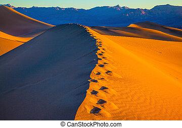Sandy Desert in Mesquite Flat, USA. Along the edge of the...