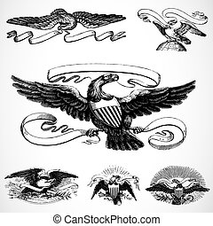 Vector Eagle Set - Detailed illustrations, easy to scale and...