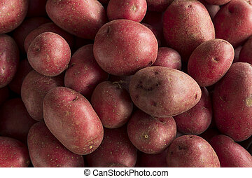 Raw Organic Red Potatoes Ready for Cooking
