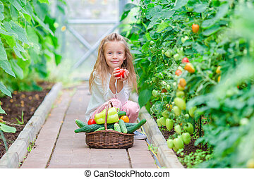 Adorable little girl harvests cucumbers and tomatoes in...
