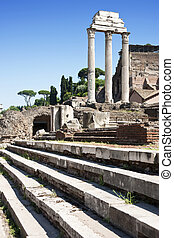 Temple of Castor and Pollux - The temple of Castor and...