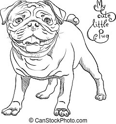 vector sketch cute dog black pug breed - black and white...