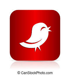 twitter red square modern design icon
