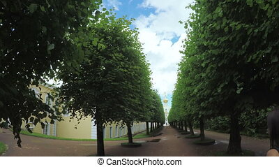 Alley in the Park in Peterhof Girl - Girl walking path in...