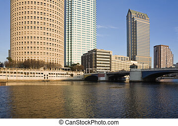 Buildings in Downtown Tampa