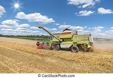 Combine harvester during harvest - Working combine harvester...