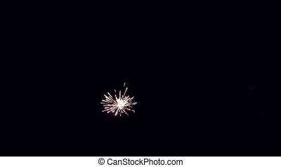 Brightly colorful fireworks and salute of various colors in...