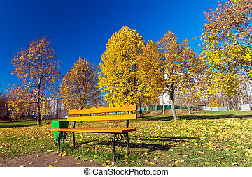 Bench in autumn park with gold leaves around - Bench in...