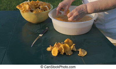 Old woman cleaning chanterelle mushrooms