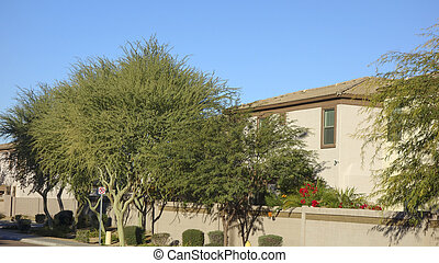 Gated Housing Community, Phoenix, AZ - Arizona warm winter...