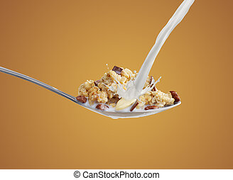 Breakfast cereal on a spoon