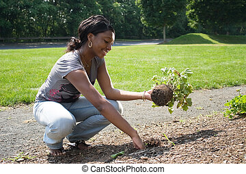 Woman Planting Flowers - A young woman planting in her...