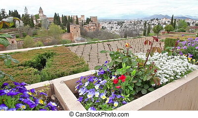 Alhambra fortress flowers - Close up of flowers in the...