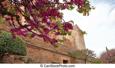 Alhambra fortress walls - Close up of walls of fortress at...