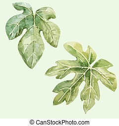 Watercolor hand drawn fig leaves - Beautiful vector image...