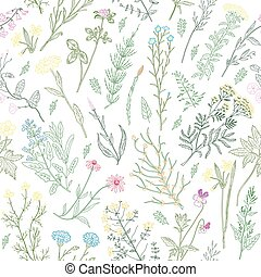 variegated herbs and flowers - Hand drawn sketch variegated...
