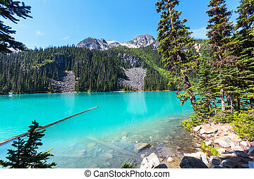 Joffre lake - Beautiful turquoise waters of the Joffre lake...
