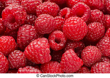 Background from raspberry berries - Background from ripe...