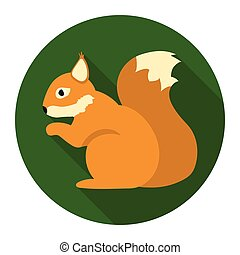 Squirrel vector icon in flat style for web - Squirrel vector...