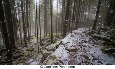 Wonderful nature scene with first snow fall in the autumn park.
