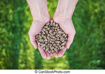 Wood pellets on hands.