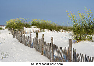 Sand Fence at Pensacola Beach - Sand fence among ripe sea...