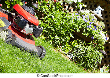 Lawn mower cutting the grass. - Red Lawn mower cutting grass...