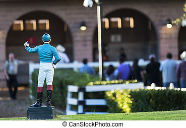 Competitive Horse Racing - Images of horses and their riders...