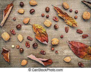 Different kinds of nuts walnuts kernels ,hazelnuts, almond...