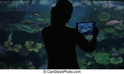 Oceanarium visitor taking photos with tablet PC - Woman...