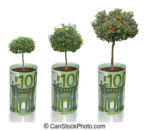 Citrus tree growing from euro bill