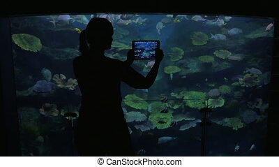 Young woman at the oceanarium take pictures of fish - Young...