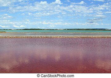 Ses Salines Formentera colorful saltworks horizon in...