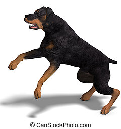 Rottweiler Dog. 3D rendering with clipping path and shadow...