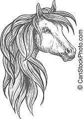 Cavalry morgan horse sketch symbol - Cavalry war horse of...