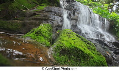 tropical waterfall with shallow focus and audio