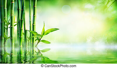 Bamboo Background - Lush Foliage With Reflection In The...