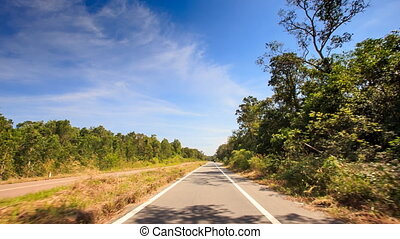 Camera Moves along Sunny Highway past Thick Plants - camera...