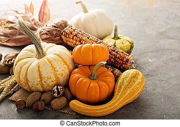 Fall copyspace with decorative pumpkins, nuts and corn