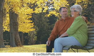 chating senior couple - senior couple sitting on park bench...