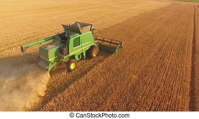 Agricultural machine gathers grain. - Top view of moving...